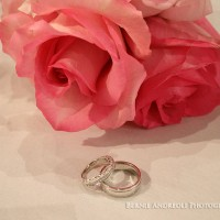 A rose and wedding rings