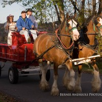 Creative Bridal Session with Bride and Groom in a Clydesdale horse drawn red wagon